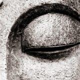 «Философия буддизма»: лекции Александра Пятигорского об отшельничестве, страдании и Дхарме