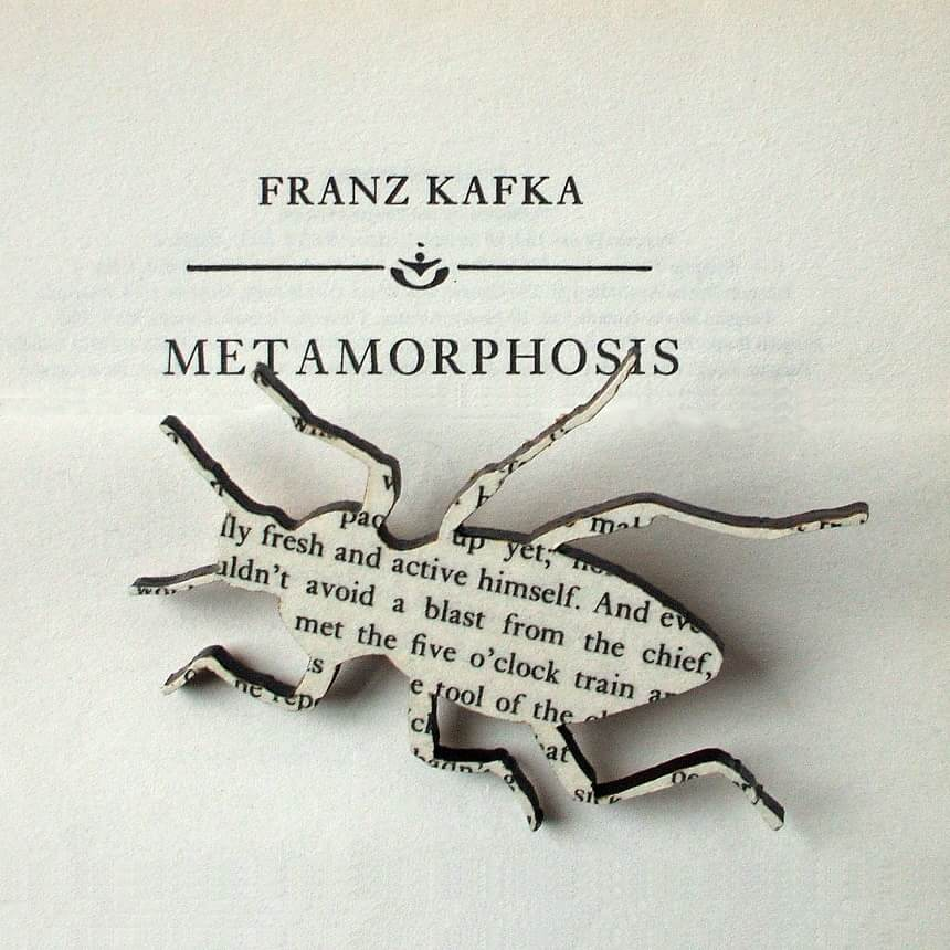 metamorphosis by franz kafka The metamorphosis can quite easily be one of franz kafka's best works of literature- one of the best in existentialist literature the author shows the struggle of human existence- the problem of living in modern society- through the narrator gregor samsa wakes in his bed and discovers he has.