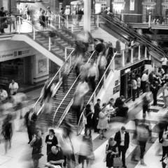 «Коллективные неврозы наших дней»: Виктор Франкл о фатализме, конформизме и нигилизме