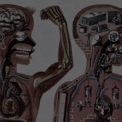 Тело как машина: почему нам стоит отказаться от описания себя в технических терминах