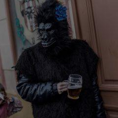Гипотеза «пьяной обезьяны»: как мы превратились из «употребляющих» шимпанзе в выпивающих людей
