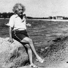 «Теория саванны»: почему очень умные люди счастливы как в толпе, так и в одиночку