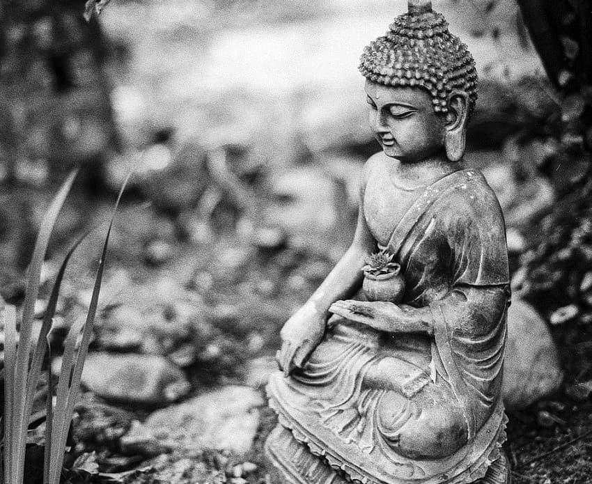 Дзен-буддизм и Кодо Саваки Роси