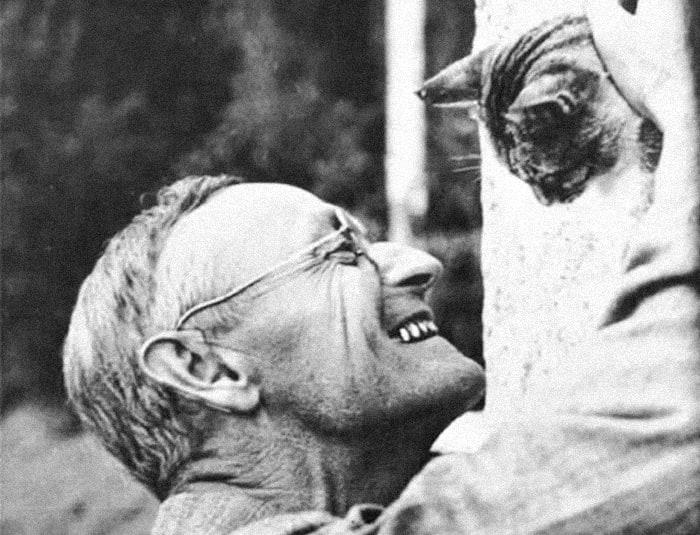 Писатели и их кошки
