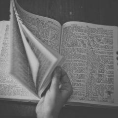«Мозаика цитации»: что такое интертекстуальность и как она помогает расшифровывать тексты
