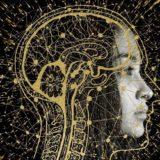 Природа сознания: почему в его квантовое происхождение верит Роджер Пенроуз