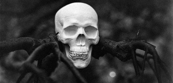 Страх, мрак, жуть: как психология, культура и наука исследуют зловещее и пугающее