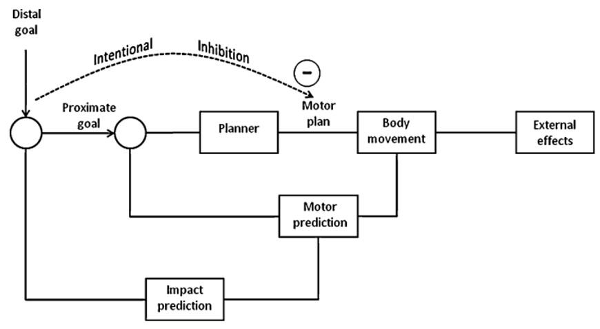 Нейронные механизмы