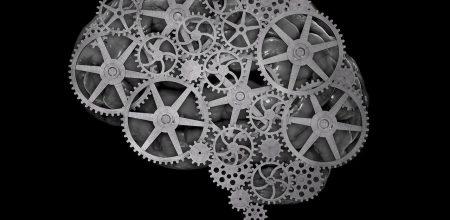 Нейроэкономика: как мы решаем, рискуем и сотрудничаем