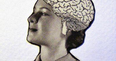 Ученые о мозге: лучшие лекции TED с русской озвучкой