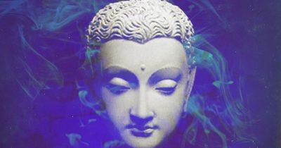 «Просветление – это плохая идея»: почему нас не спасёт буддизм?