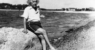 """""""Теория саванны"""": почему очень умные люди счастливы как в толпе, так и в одиночку"""